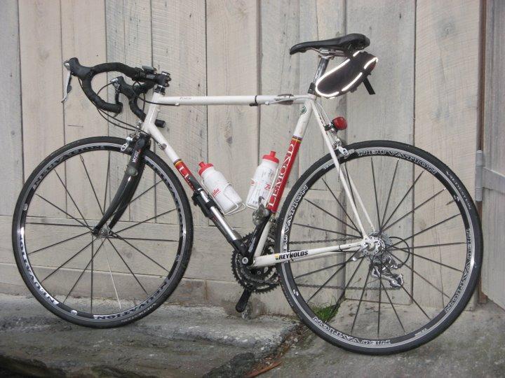 The Travel Bike